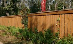 Ogrodzenie drewniane. Jakie drewno jest najlepsze na płot?