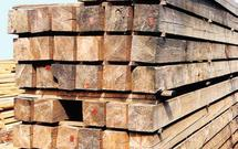 Wybór drewna do budowy domu