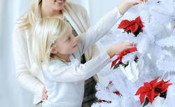 Stwórz elegancką dekorację świąteczną z gwiazdą betlejemską. 8 inspirujących zdjęć