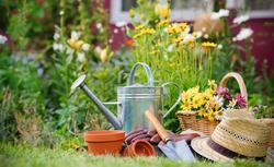 Wiosenne prace w ogrodzie. Sadzenie kwiatów, przycinanie krzewów, pielęgnacja trawnika