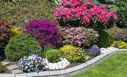 Aranżacja przydomowego ogrodu. Jak dobierać i łączyć kolory w ogrodzie?