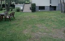 Wiosenna pielęgnacja trawnika: wałowanie, nawożenie, wertykulacja. Pielęgnacja trawnika po zimie